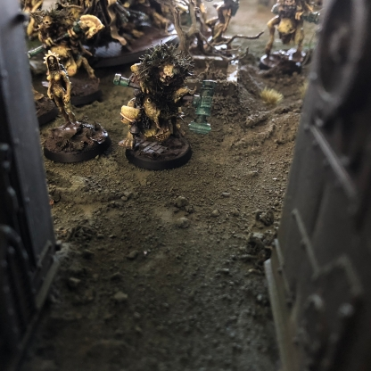 Borealis Sentinels scouring the surface of Gheal.